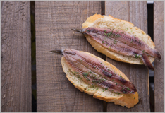 Cooking fish: sardines and anchovies